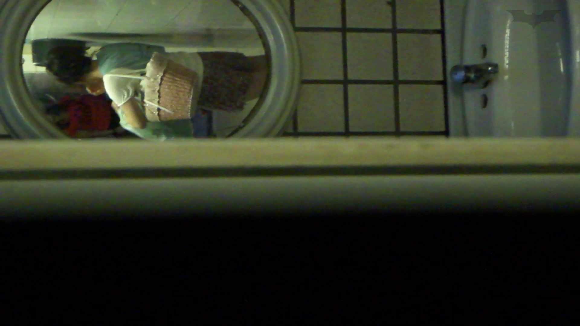 ギャルのツルピカ潜入盗撮!Vol.12 洗面所  68PIX 42