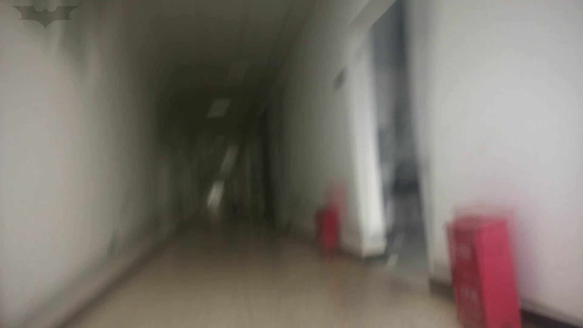 JD盗撮 美女の洗面所の秘密 Vol.10 盗撮  102PIX 22