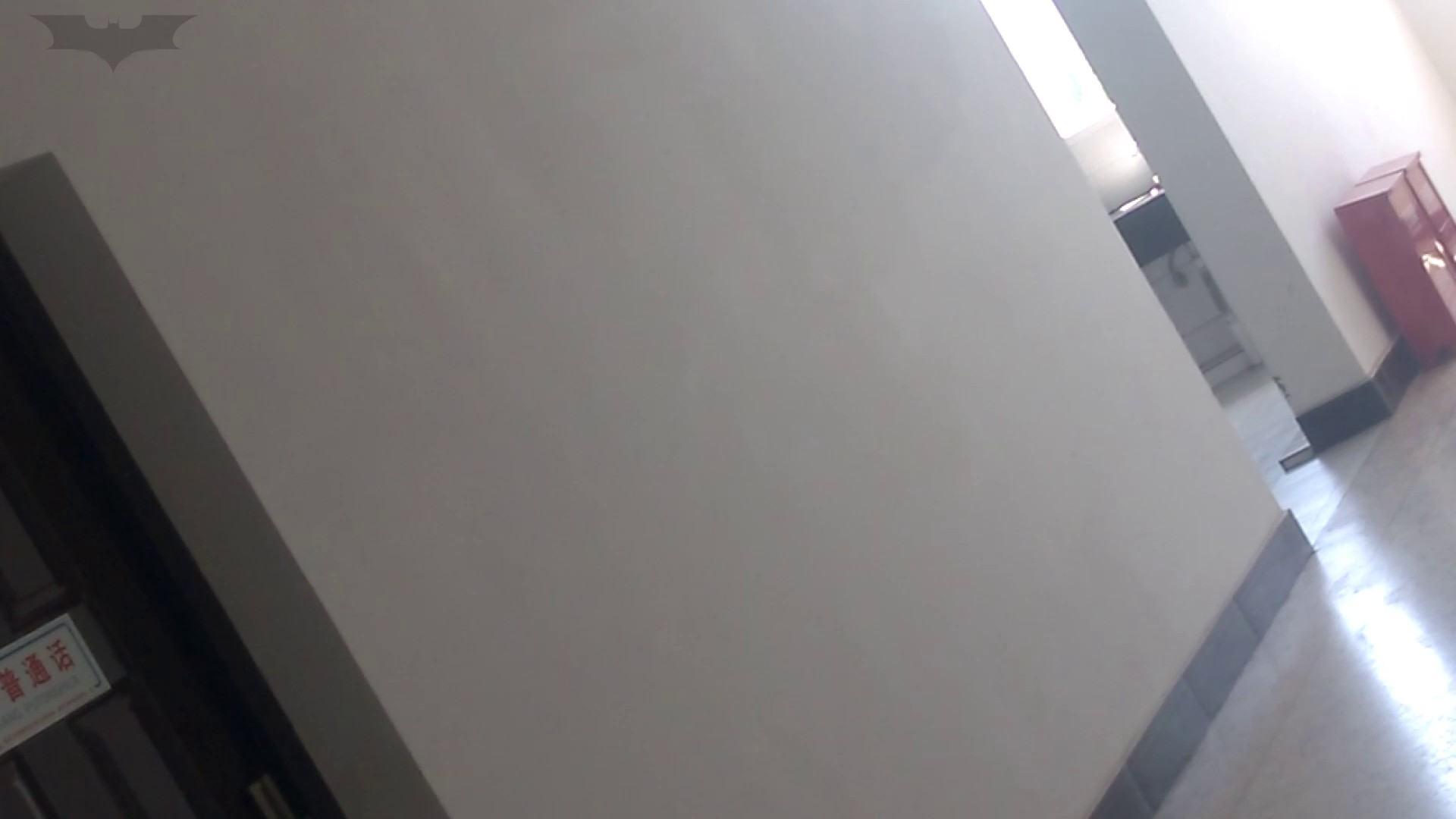 JD盗撮 美女の洗面所の秘密 Vol.10 盗撮  102PIX 83