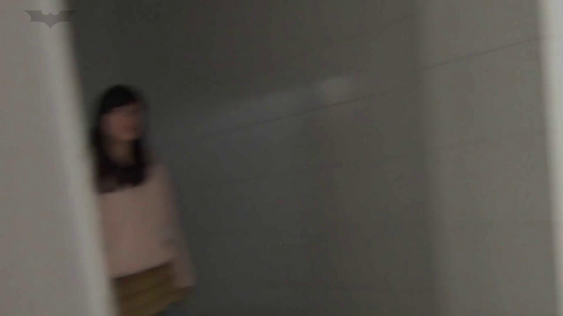 JD盗撮 美女の洗面所の秘密 Vol.22 美女  71PIX 22