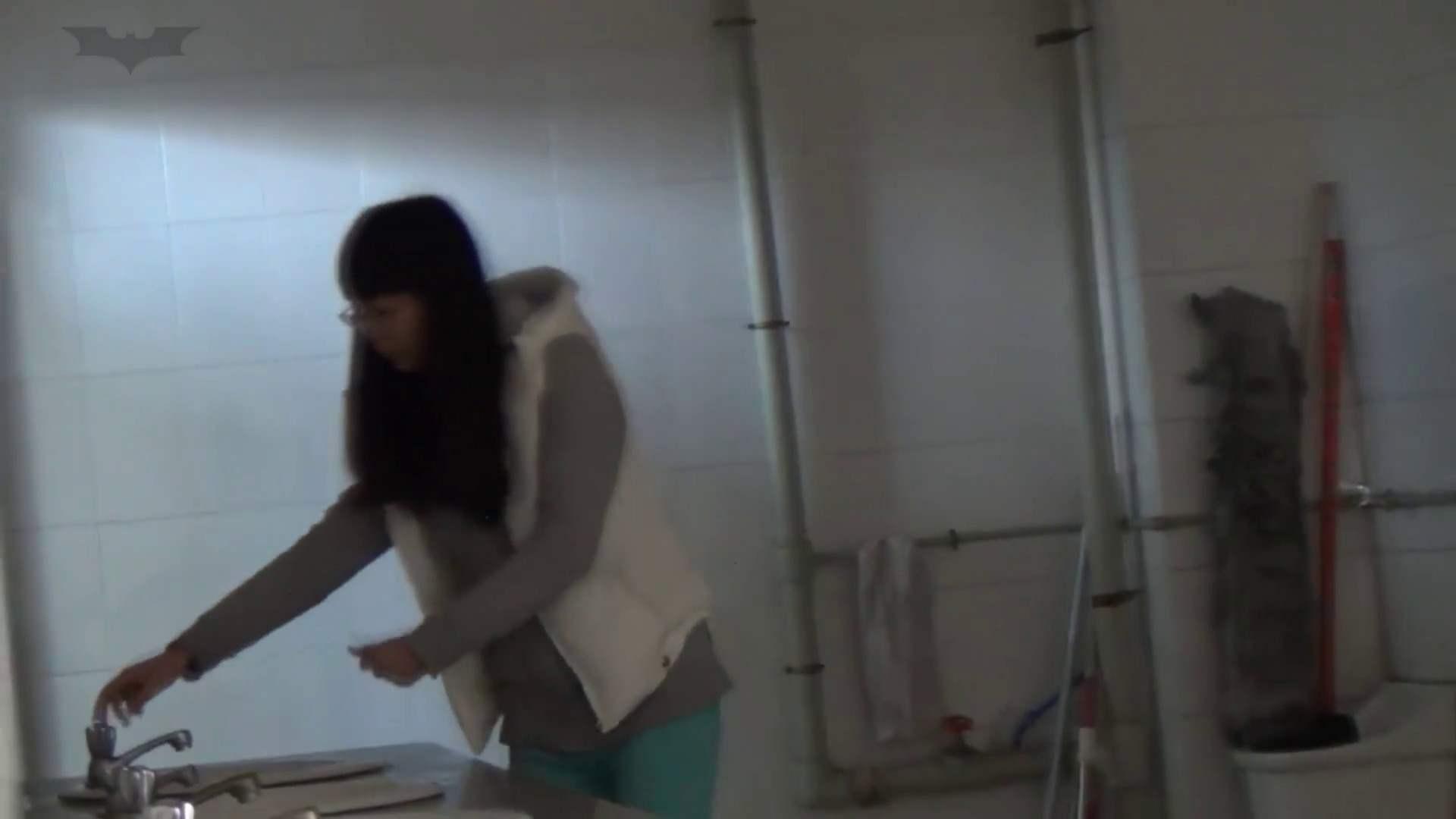 JD盗撮 美女の洗面所の秘密 Vol.22 美女  71PIX 39