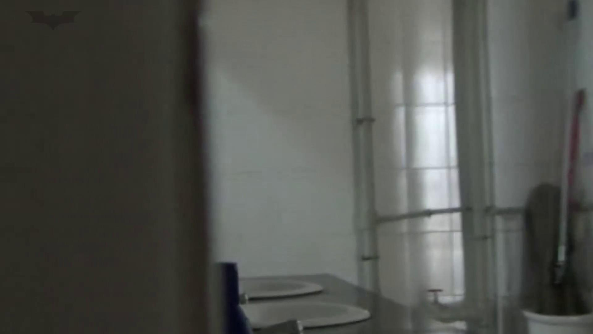 JD盗撮 美女の洗面所の秘密 Vol.23 ギャル  86PIX 46