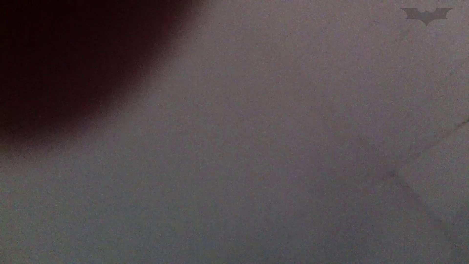 JD盗撮 美女の洗面所の秘密 Vol.67