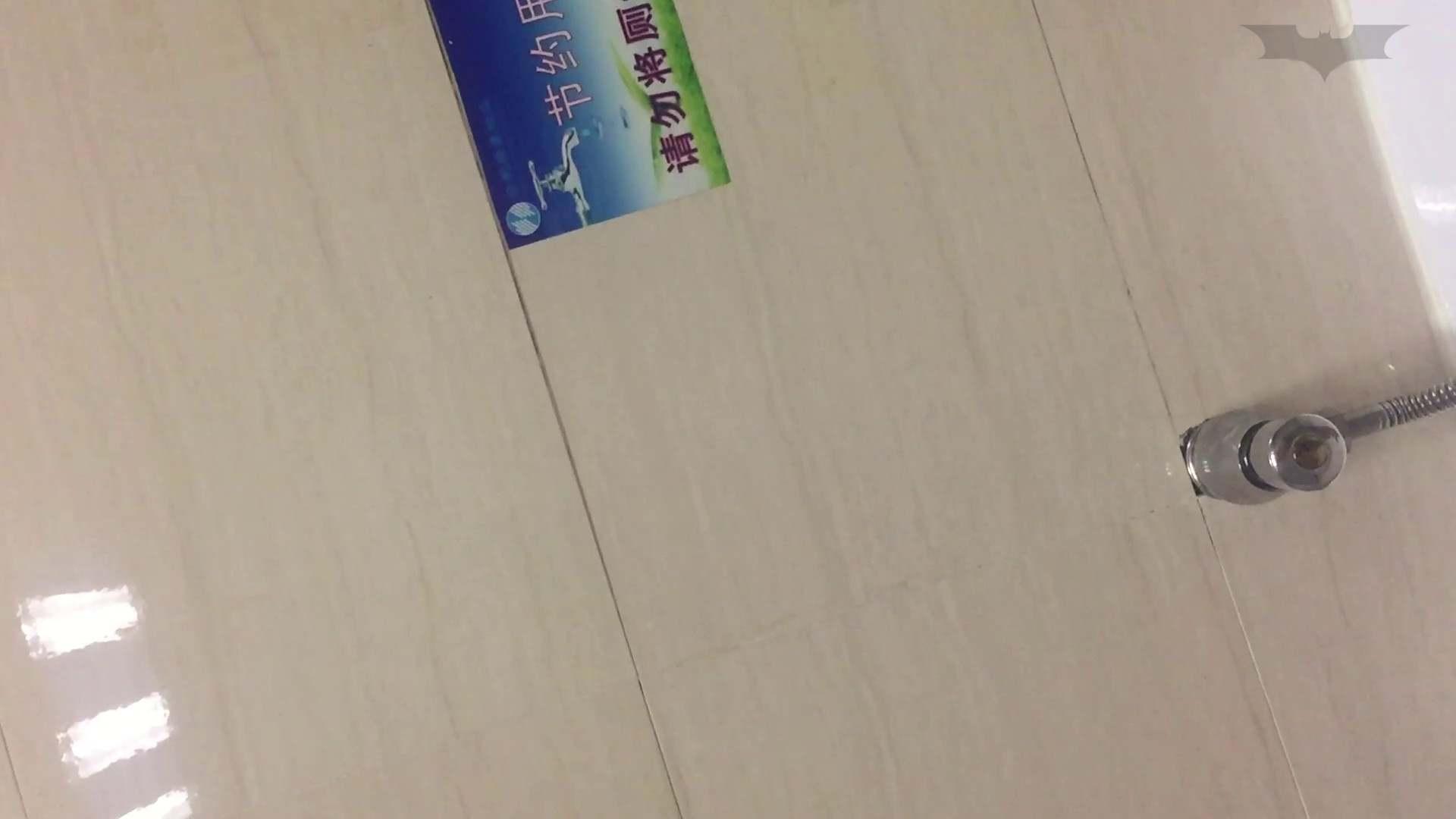 JD盗撮 美女の洗面所の秘密 Vol.72 盗撮  72PIX 46