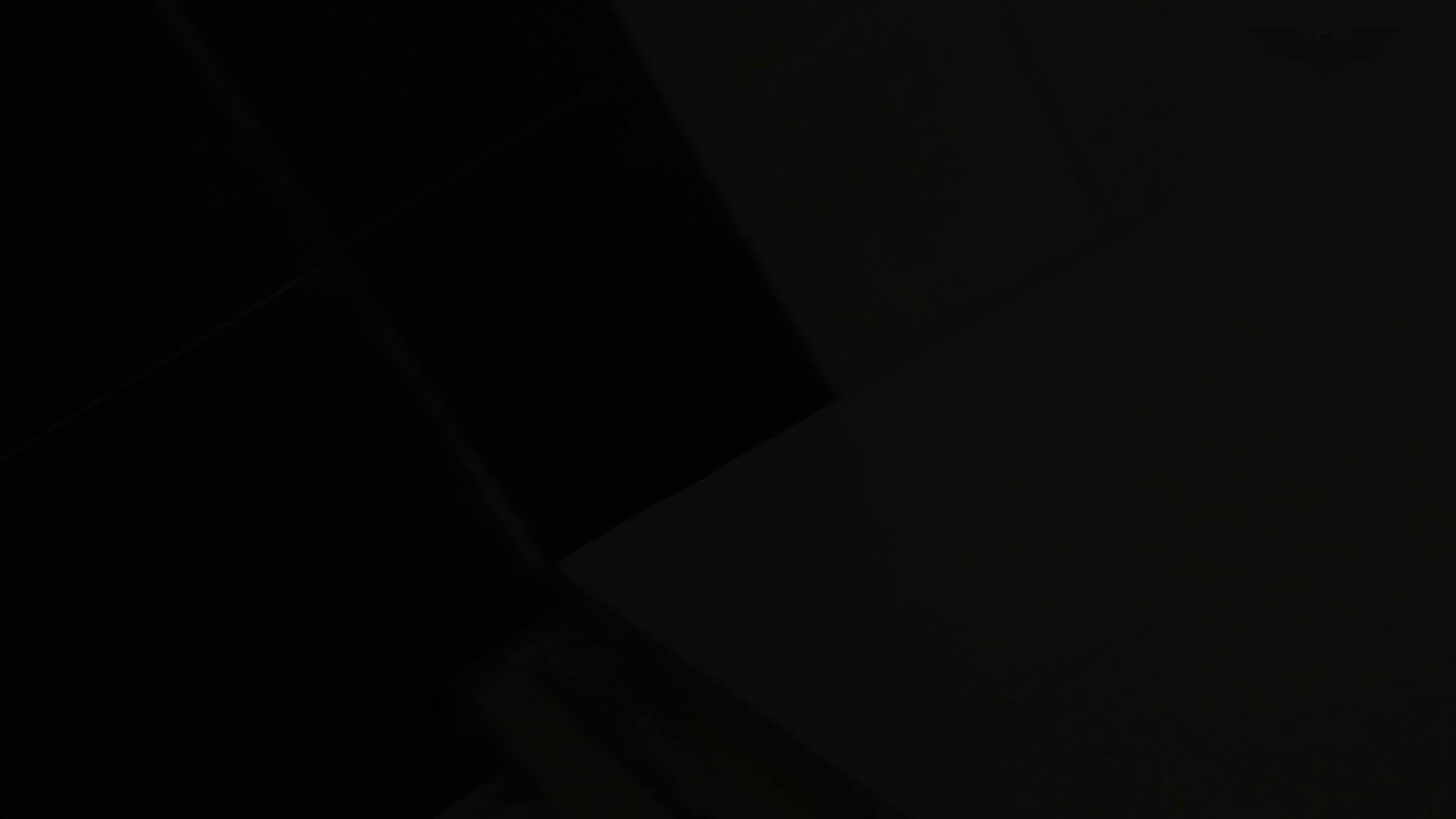 JD盗撮 美女の洗面所の秘密 Vol.73 ギャル  96PIX 66