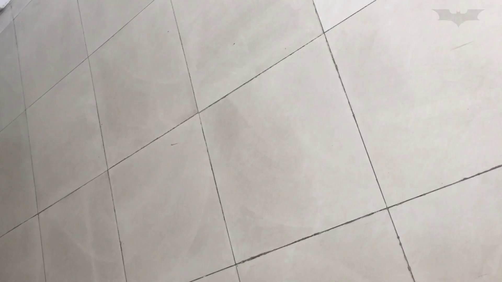 芸術大学ガチ潜入盗撮 JD盗撮 美女の洗面所の秘密 Vol.80 盛合せ  79PIX 4