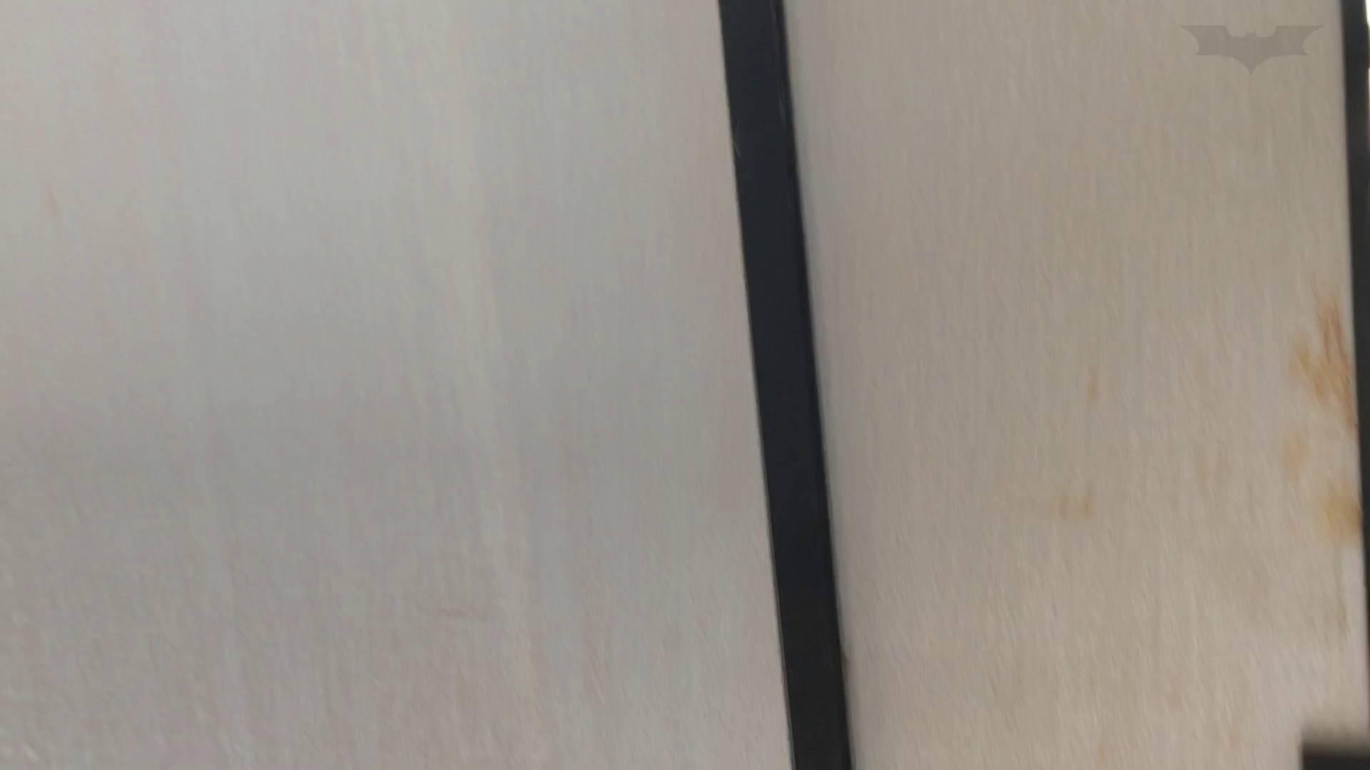 芸術大学ガチ潜入盗撮 JD盗撮 美女の洗面所の秘密 Vol.80 盛合せ  79PIX 26