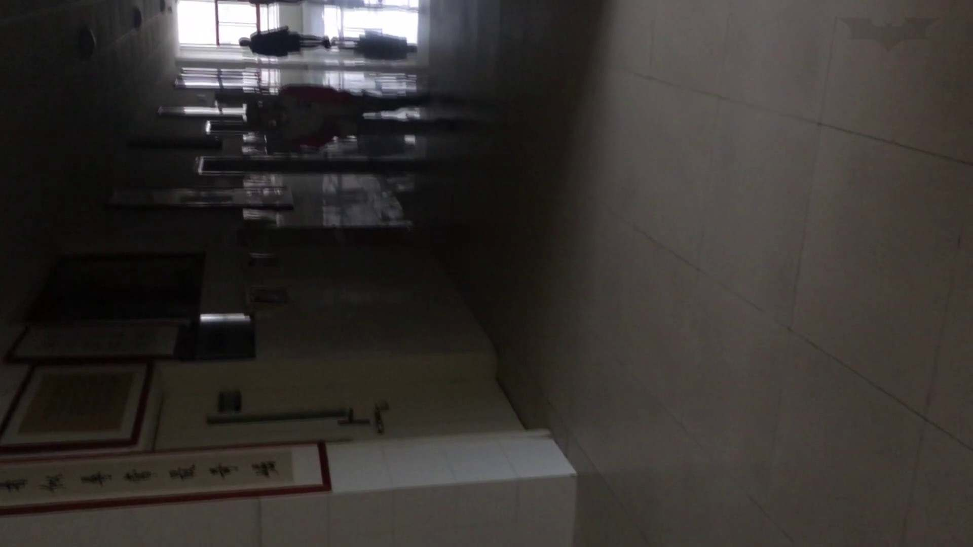 芸術大学ガチ潜入盗撮 JD盗撮 美女の洗面所の秘密 Vol.80 盛合せ  79PIX 65