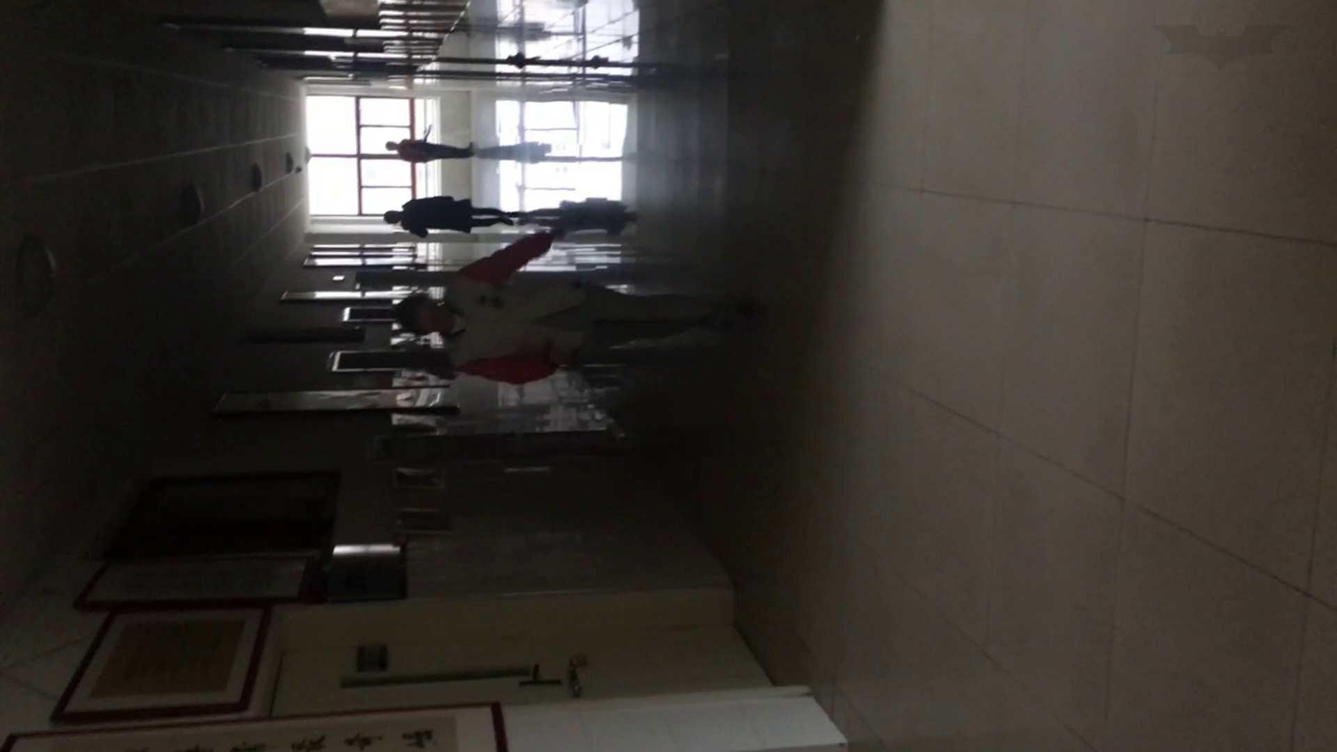 芸術大学ガチ潜入盗撮 JD盗撮 美女の洗面所の秘密 Vol.80 盛合せ  79PIX 66