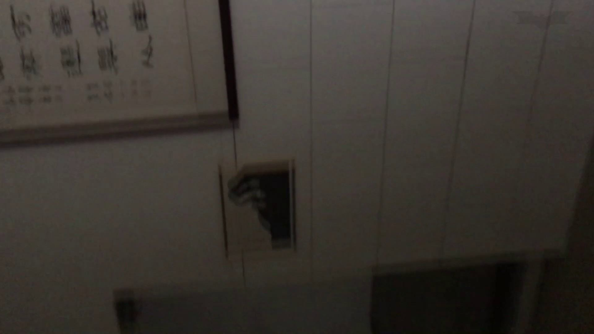 芸術大学ガチ潜入盗撮 JD盗撮 美女の洗面所の秘密 Vol.80 盛合せ  79PIX 70