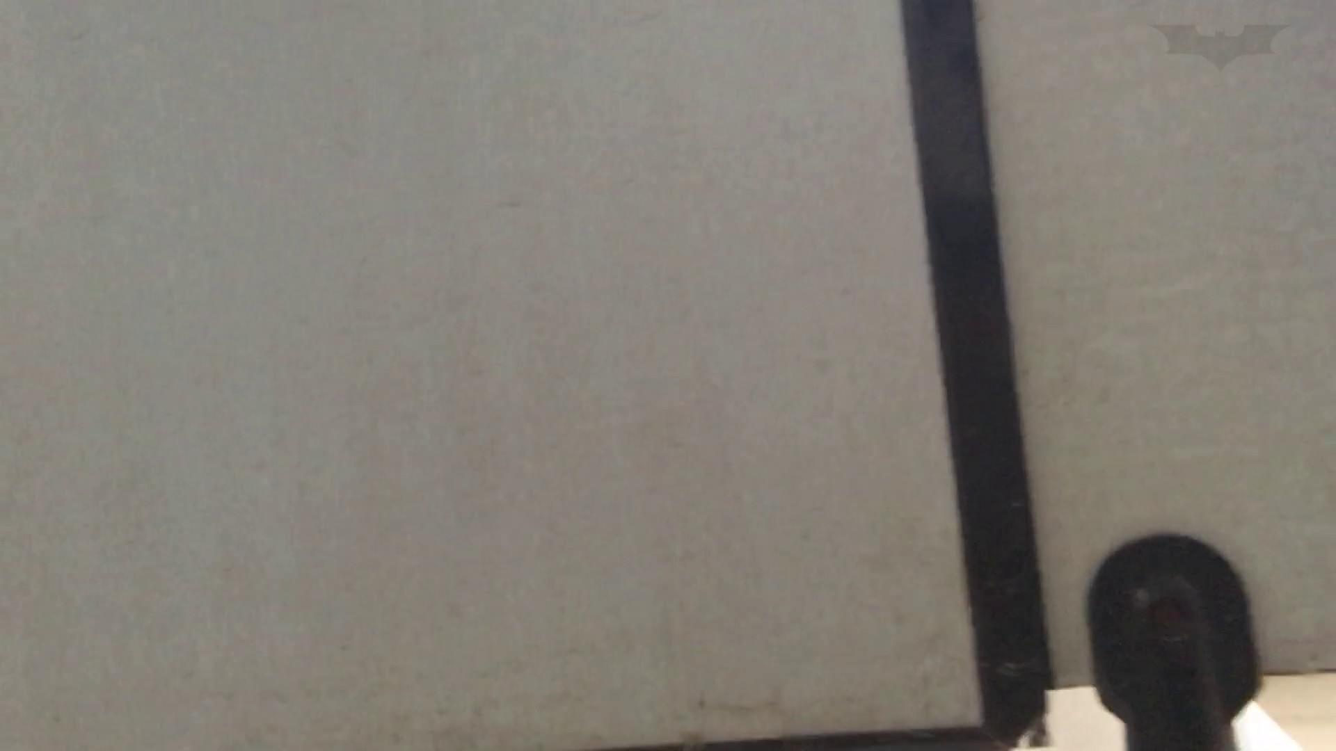 芸術大学ガチ潜入盗撮 JD盗撮 美女の洗面所の秘密 Vol.80 盛合せ  79PIX 75