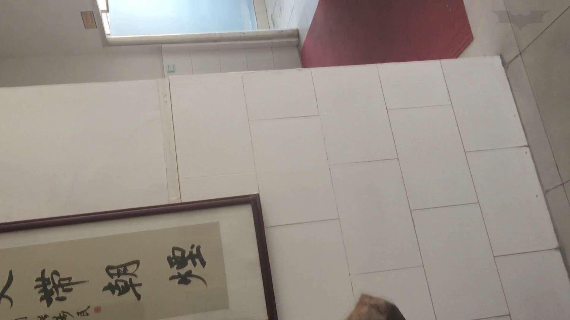芸術大学ガチ潜入盗撮 JD盗撮 美女の洗面所の秘密 Vol.81 盗撮  62PIX 18