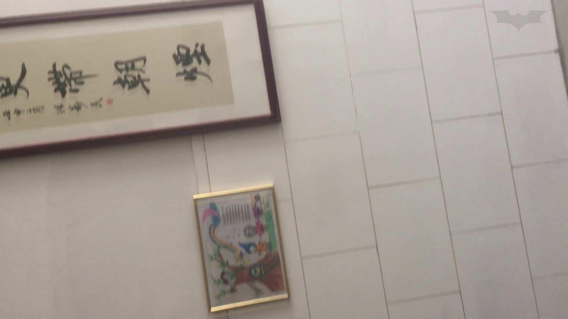 芸術大学ガチ潜入盗撮 JD盗撮 美女の洗面所の秘密 Vol.81 盗撮  62PIX 19