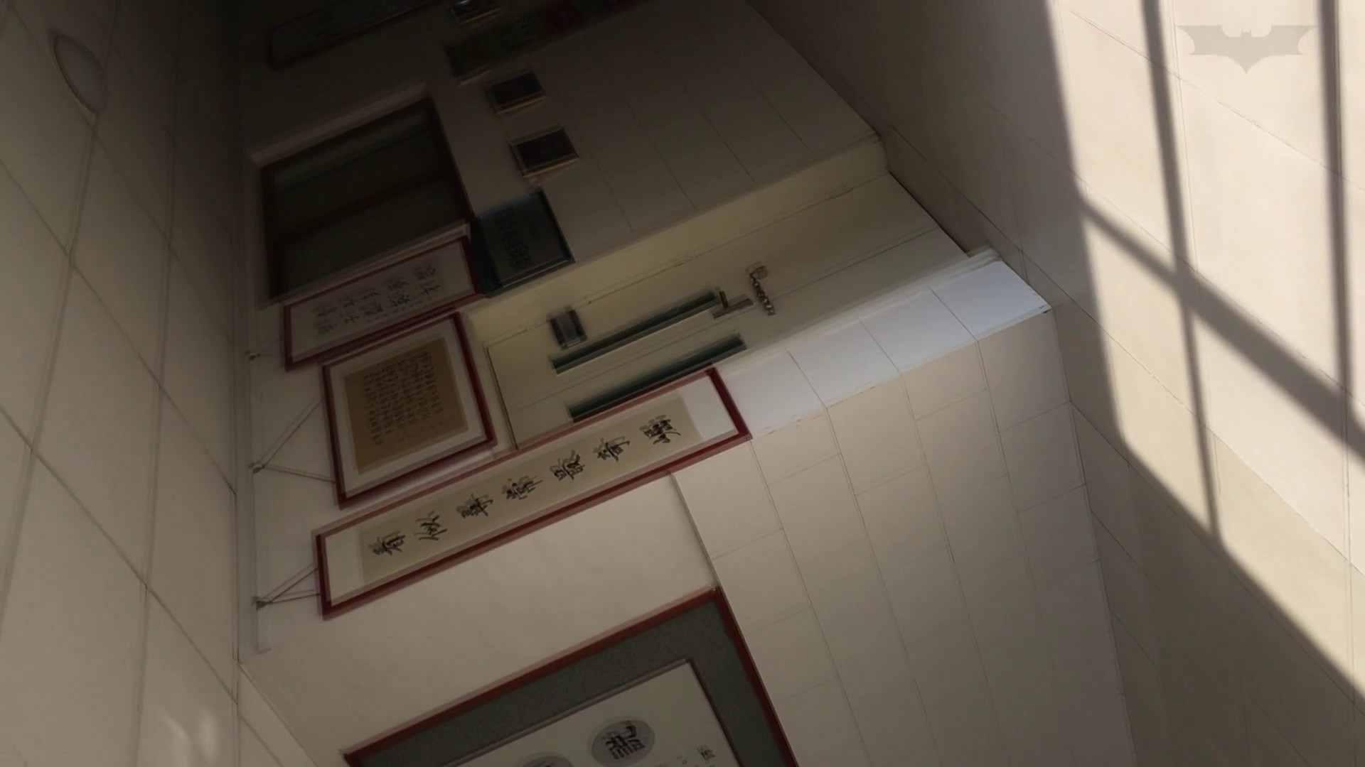 芸術大学ガチ潜入盗撮 JD盗撮 美女の洗面所の秘密 Vol.91 トイレ  72PIX 9