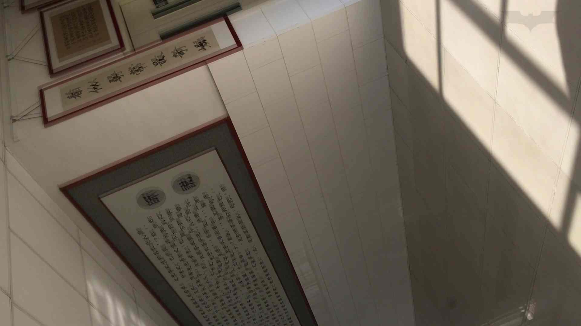 芸術大学ガチ潜入盗撮 JD盗撮 美女の洗面所の秘密 Vol.91 トイレ  72PIX 10