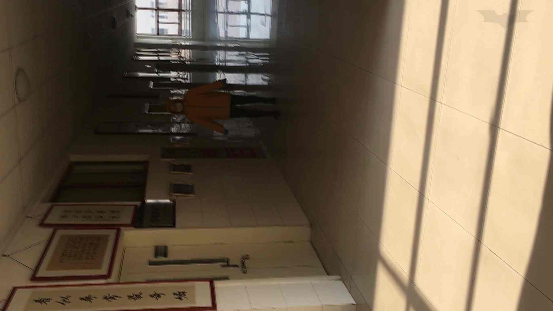 芸術大学ガチ潜入盗撮 JD盗撮 美女の洗面所の秘密 Vol.91 トイレ  72PIX 11