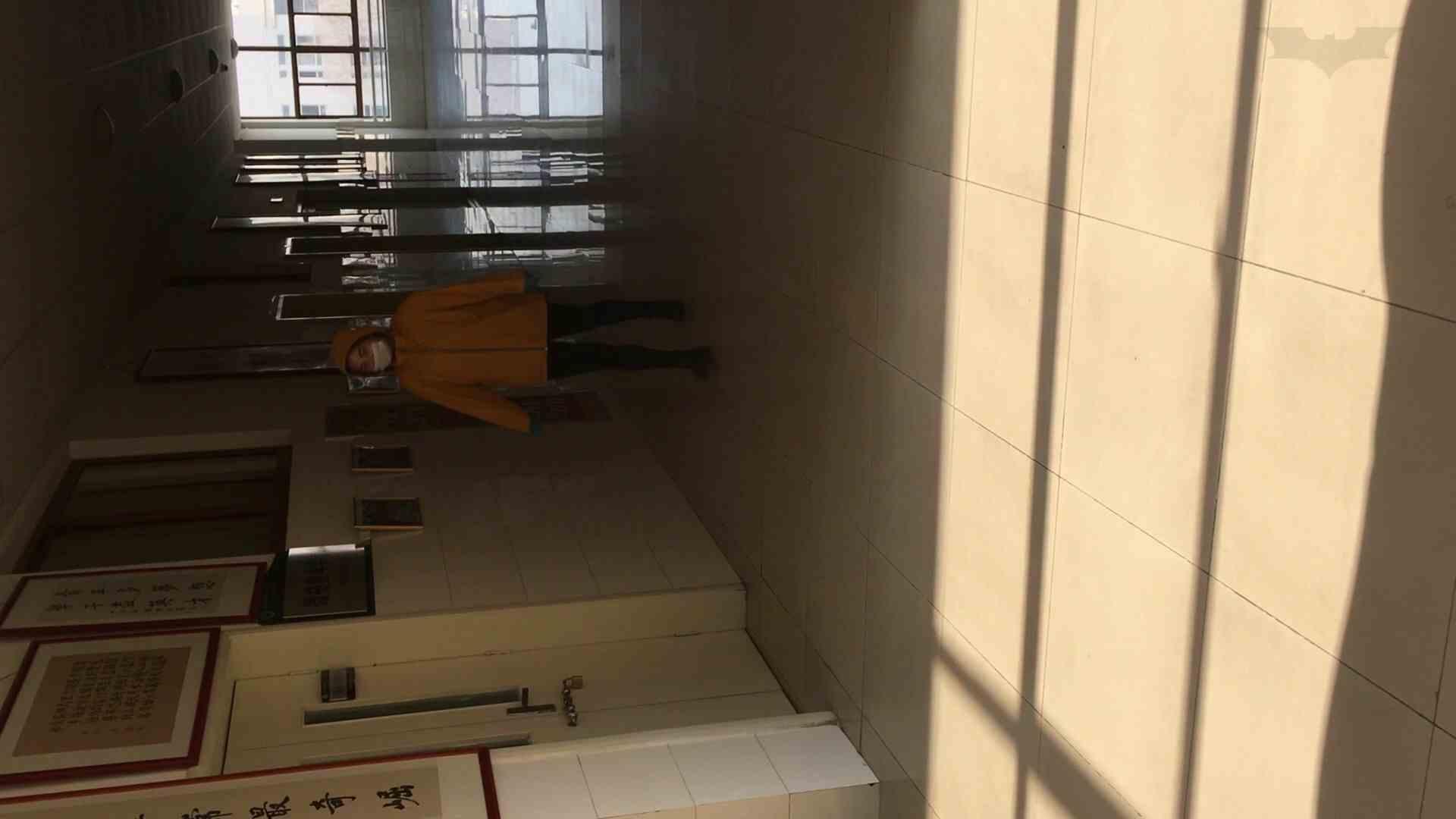 芸術大学ガチ潜入盗撮 JD盗撮 美女の洗面所の秘密 Vol.91 トイレ  72PIX 12