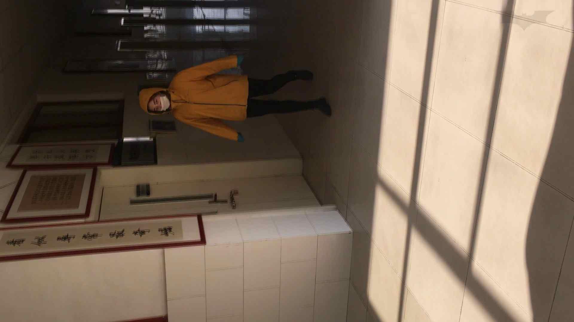 芸術大学ガチ潜入盗撮 JD盗撮 美女の洗面所の秘密 Vol.91 トイレ  72PIX 13