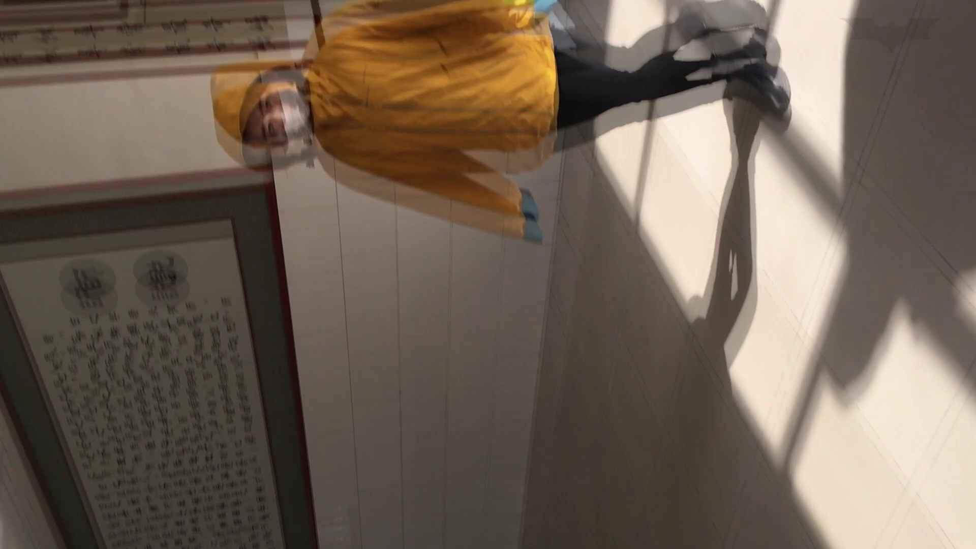 芸術大学ガチ潜入盗撮 JD盗撮 美女の洗面所の秘密 Vol.91 トイレ  72PIX 15