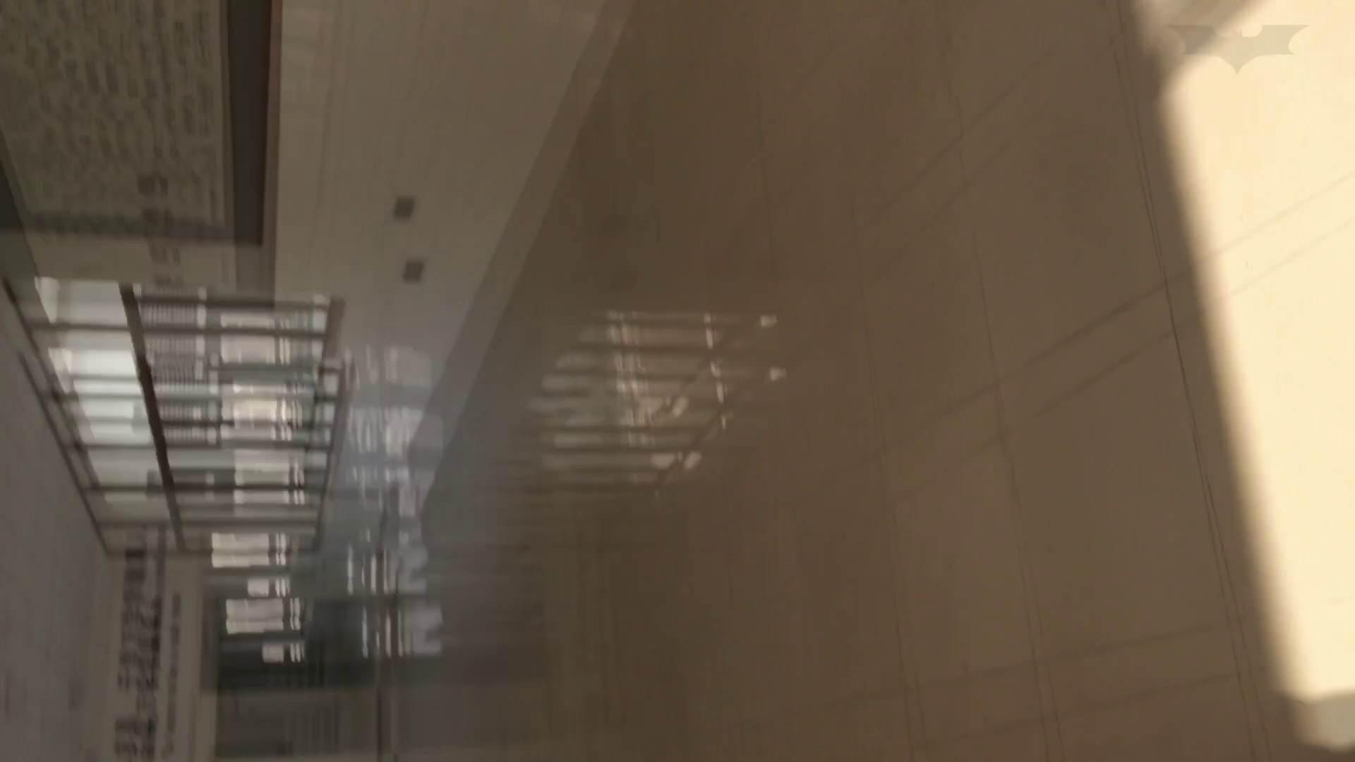 芸術大学ガチ潜入盗撮 JD盗撮 美女の洗面所の秘密 Vol.91 トイレ  72PIX 18