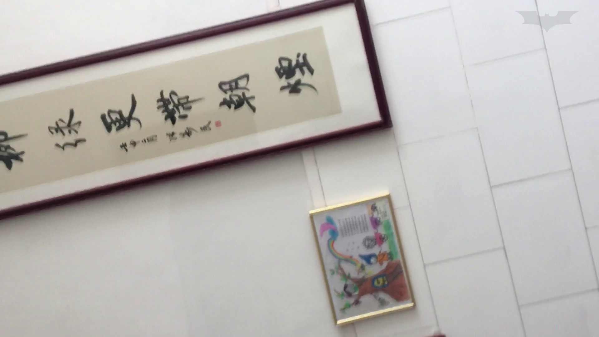 芸術大学ガチ潜入盗撮 JD盗撮 美女の洗面所の秘密 Vol.91 トイレ  72PIX 20