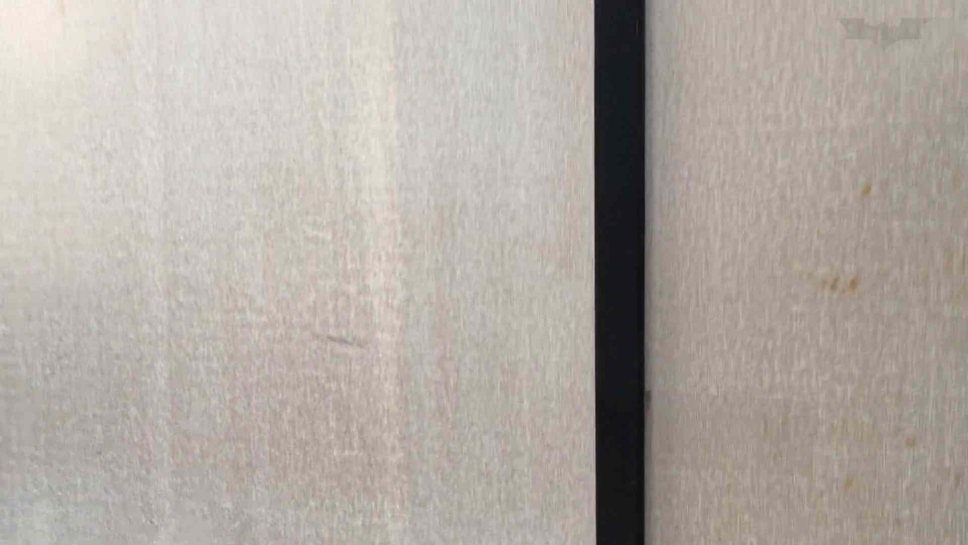 芸術大学ガチ潜入盗撮 JD盗撮 美女の洗面所の秘密 Vol.91 トイレ  72PIX 69