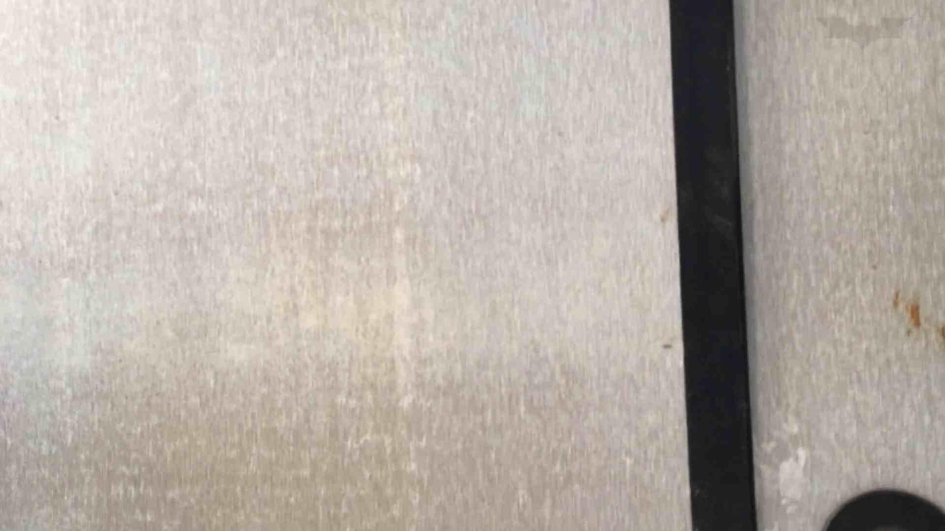芸術大学ガチ潜入盗撮 JD盗撮 美女の洗面所の秘密 Vol.91 トイレ  72PIX 70