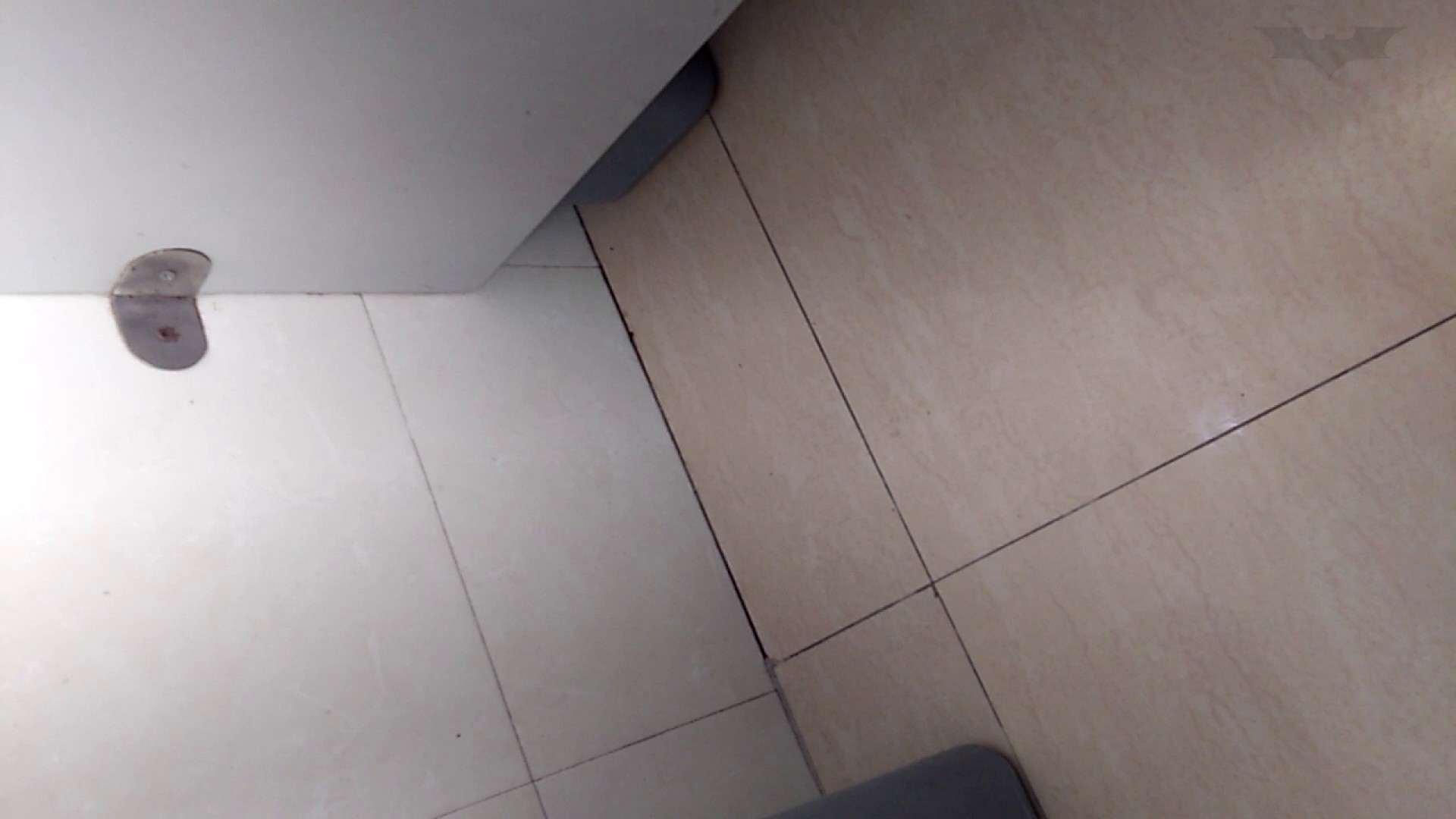 芸術大学ガチ潜入盗撮 JD盗撮 美女の洗面所の秘密 Vol.99 美女  65PIX 65