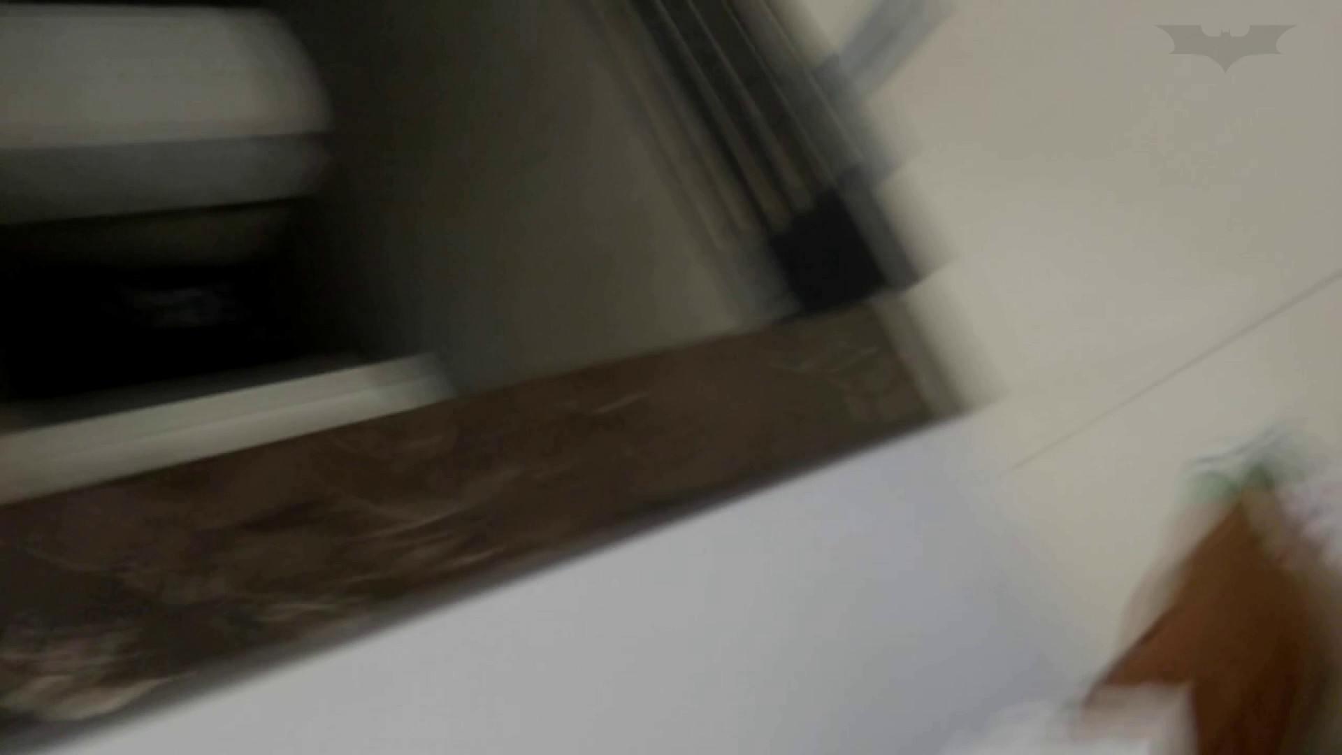 芸術大学ガチ潜入盗撮 JD盗撮 美女の洗面所の秘密 Vol.102 盛合せ  53PIX 48