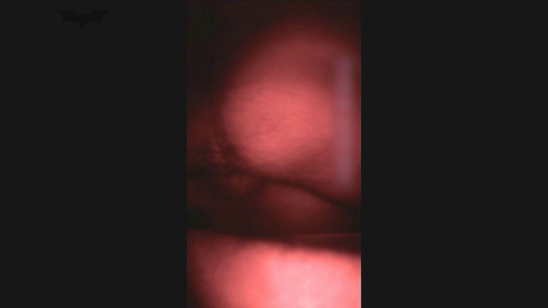 【40位 2016】(注)の せっくす(シリーズ 5人目) Vol.43 桃色乳首  105PIX 83