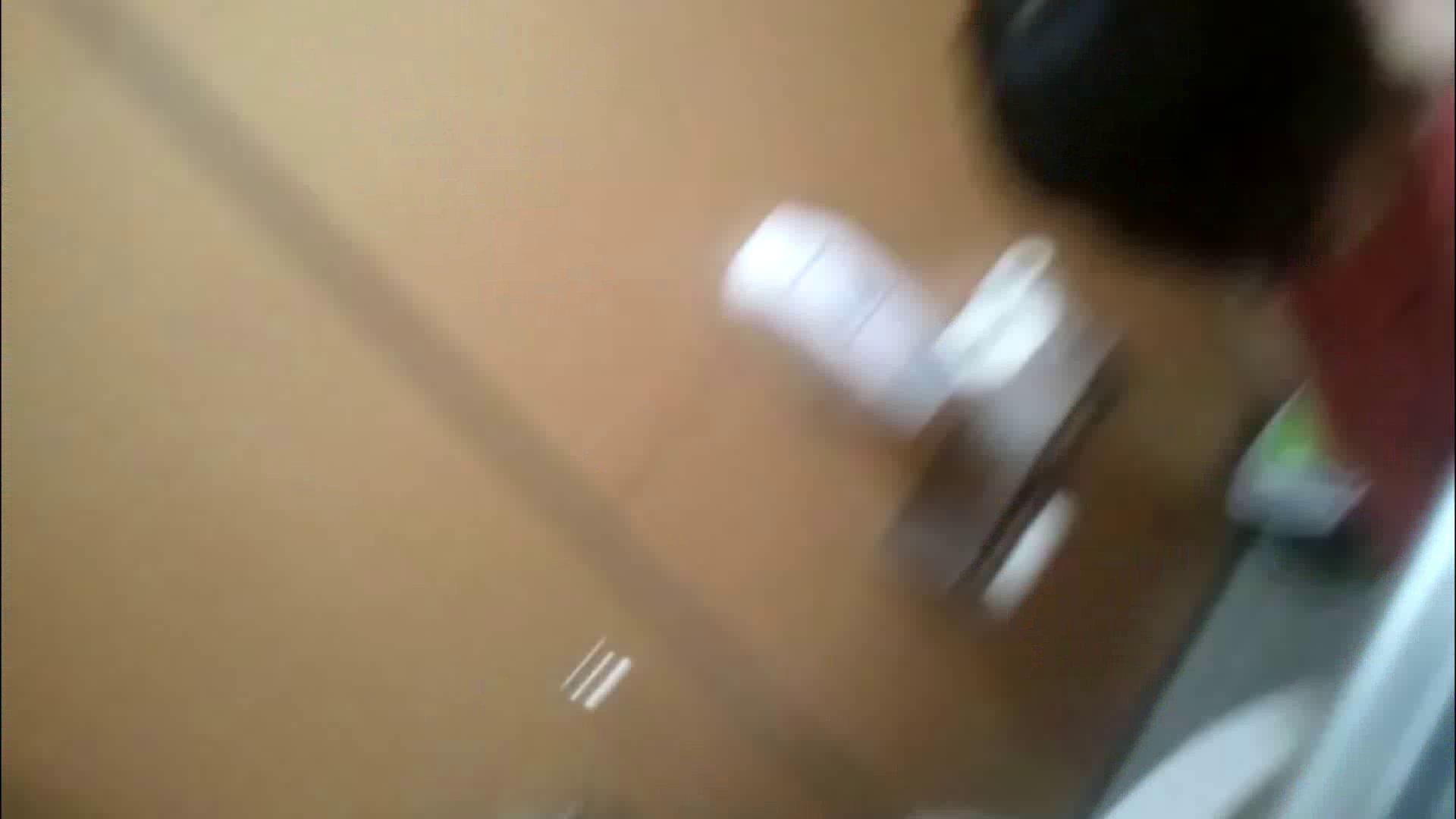化粧室絵巻 商い場編 VOL.09 ちょっと追ったりしてみました。 女子トイレ  52PIX 4