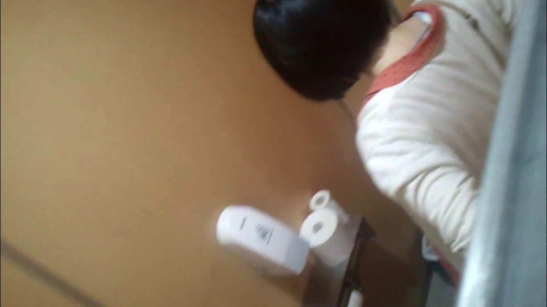 化粧室絵巻 商い場編 VOL.09 ちょっと追ったりしてみました。 女子トイレ  52PIX 6