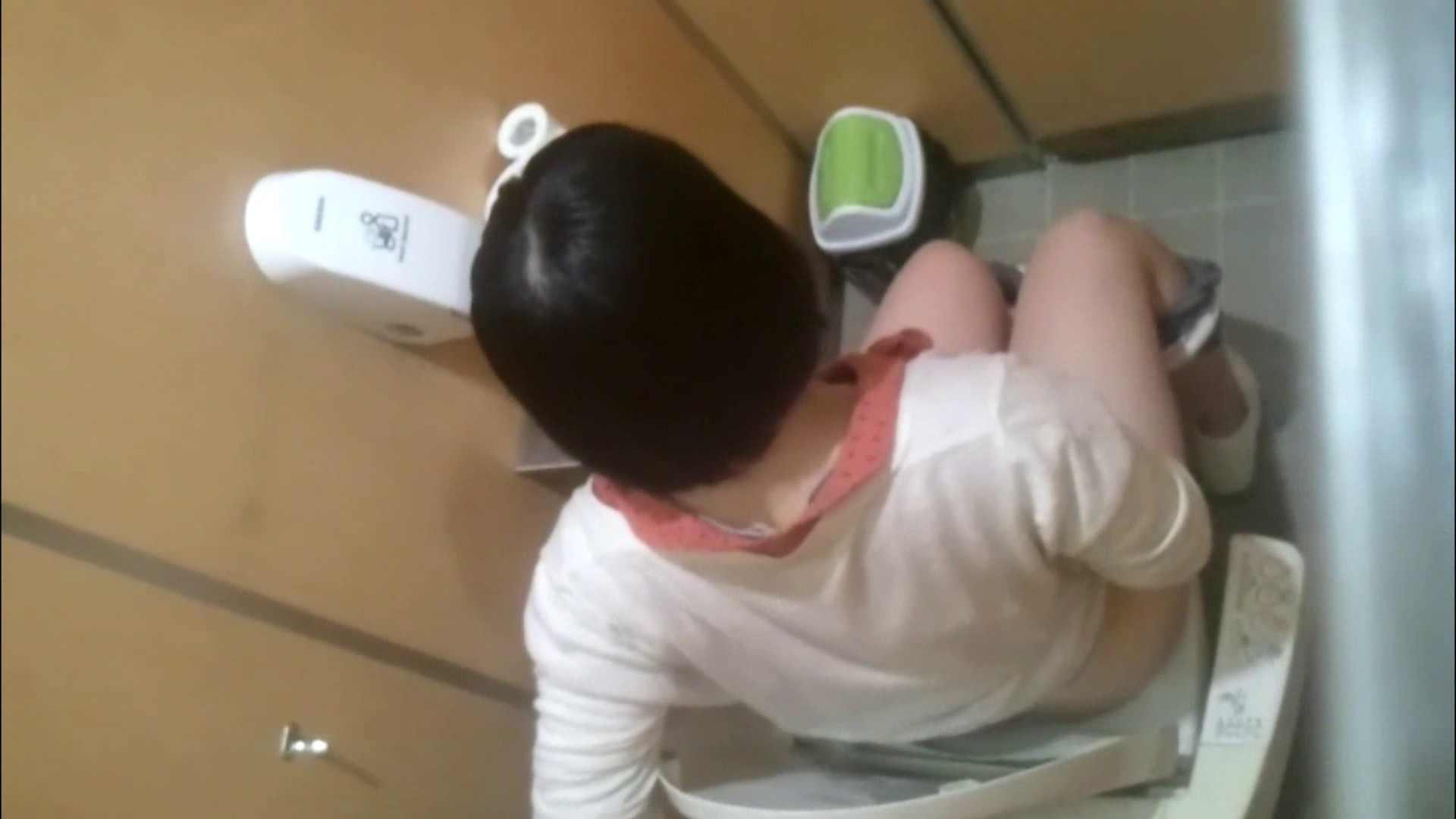 化粧室絵巻 商い場編 VOL.09 ちょっと追ったりしてみました。 女子トイレ  52PIX 25