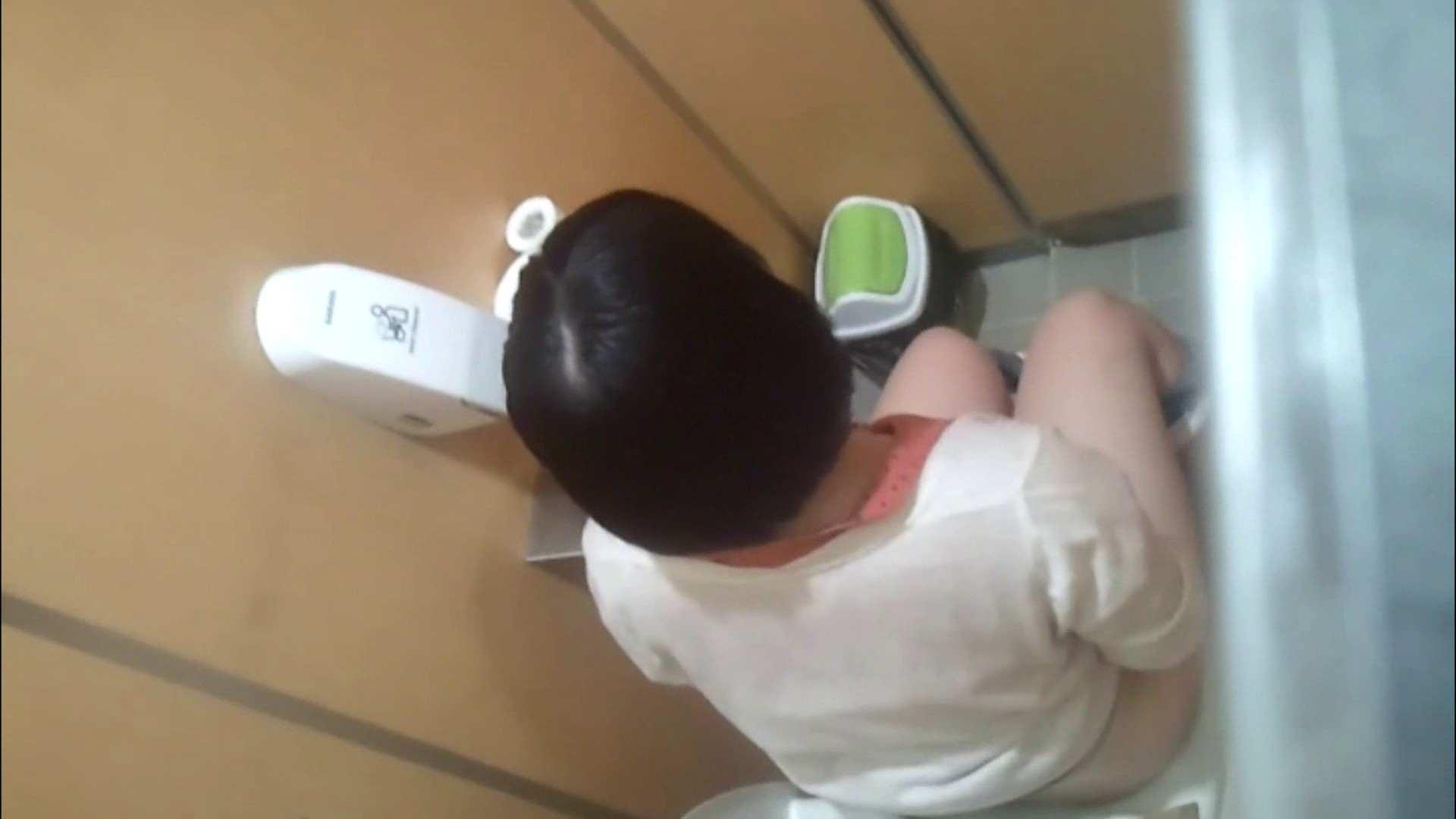 化粧室絵巻 商い場編 VOL.09 ちょっと追ったりしてみました。 女子トイレ  52PIX 28