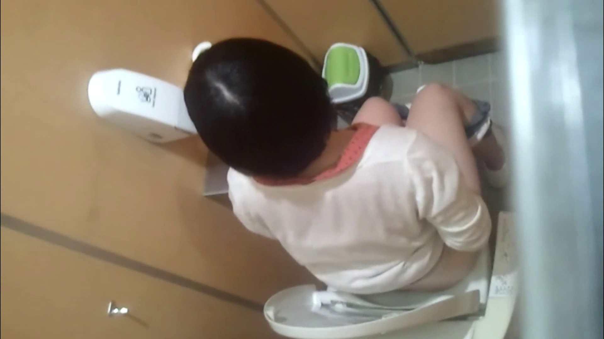 化粧室絵巻 商い場編 VOL.09 ちょっと追ったりしてみました。 女子トイレ  52PIX 30