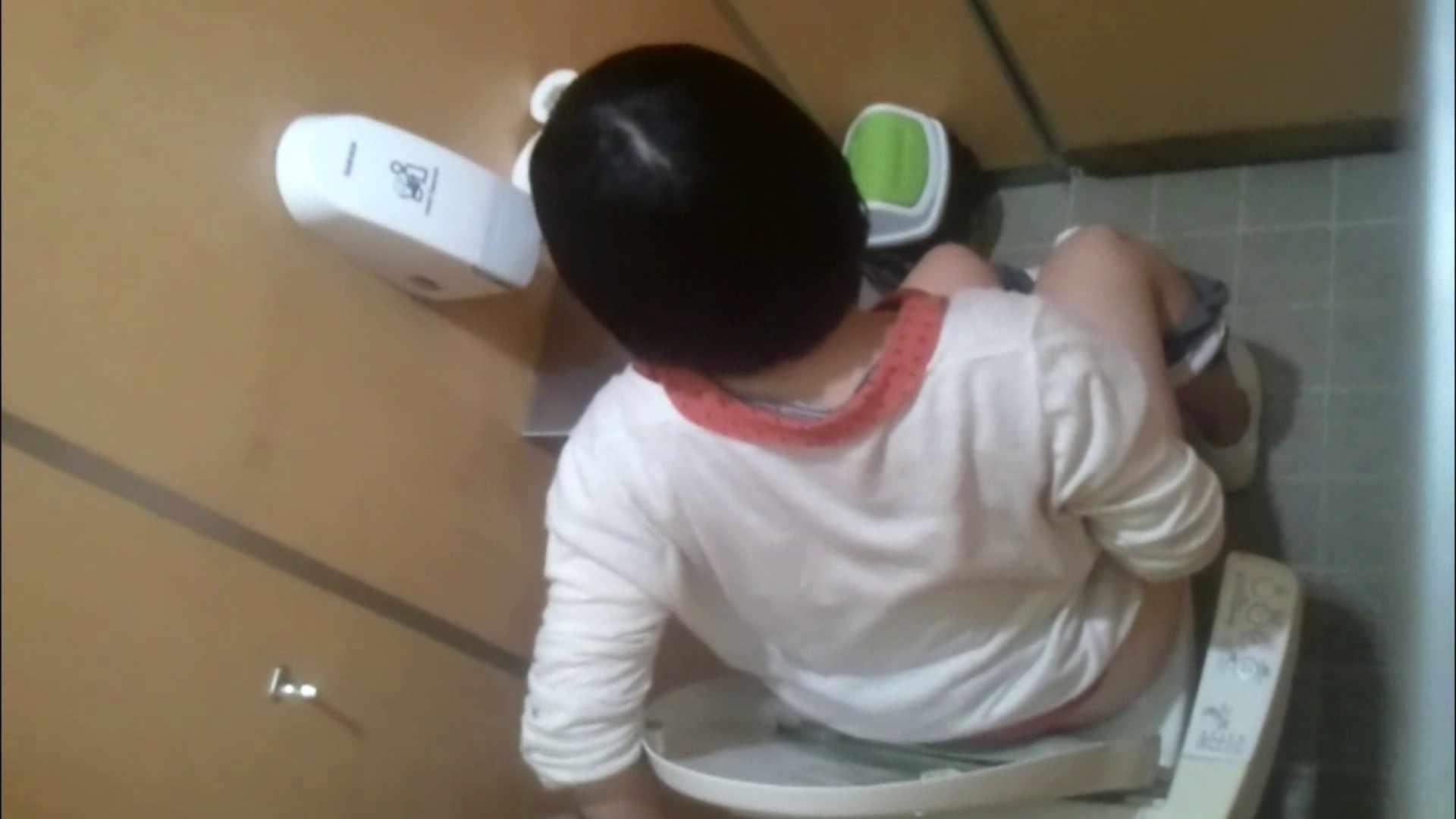 化粧室絵巻 商い場編 VOL.09 ちょっと追ったりしてみました。 女子トイレ  52PIX 36