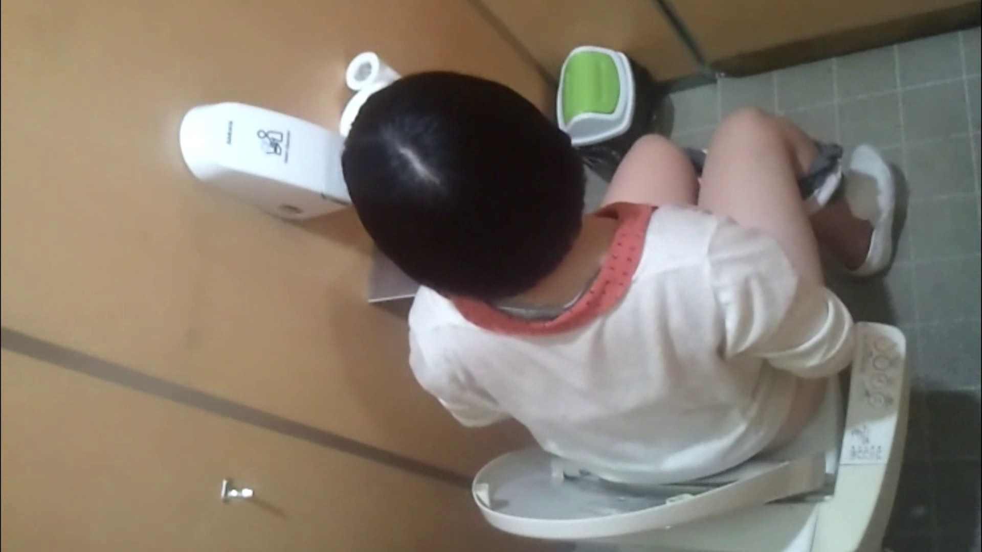 化粧室絵巻 商い場編 VOL.09 ちょっと追ったりしてみました。 女子トイレ  52PIX 40