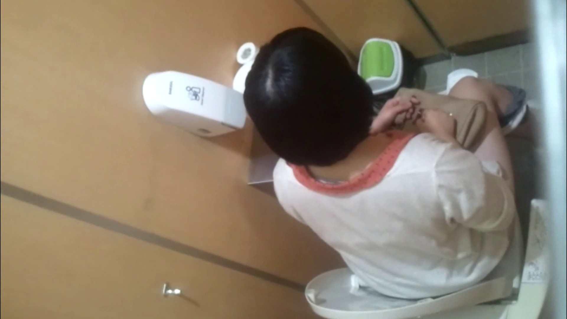 化粧室絵巻 商い場編 VOL.09 ちょっと追ったりしてみました。 女子トイレ  52PIX 46