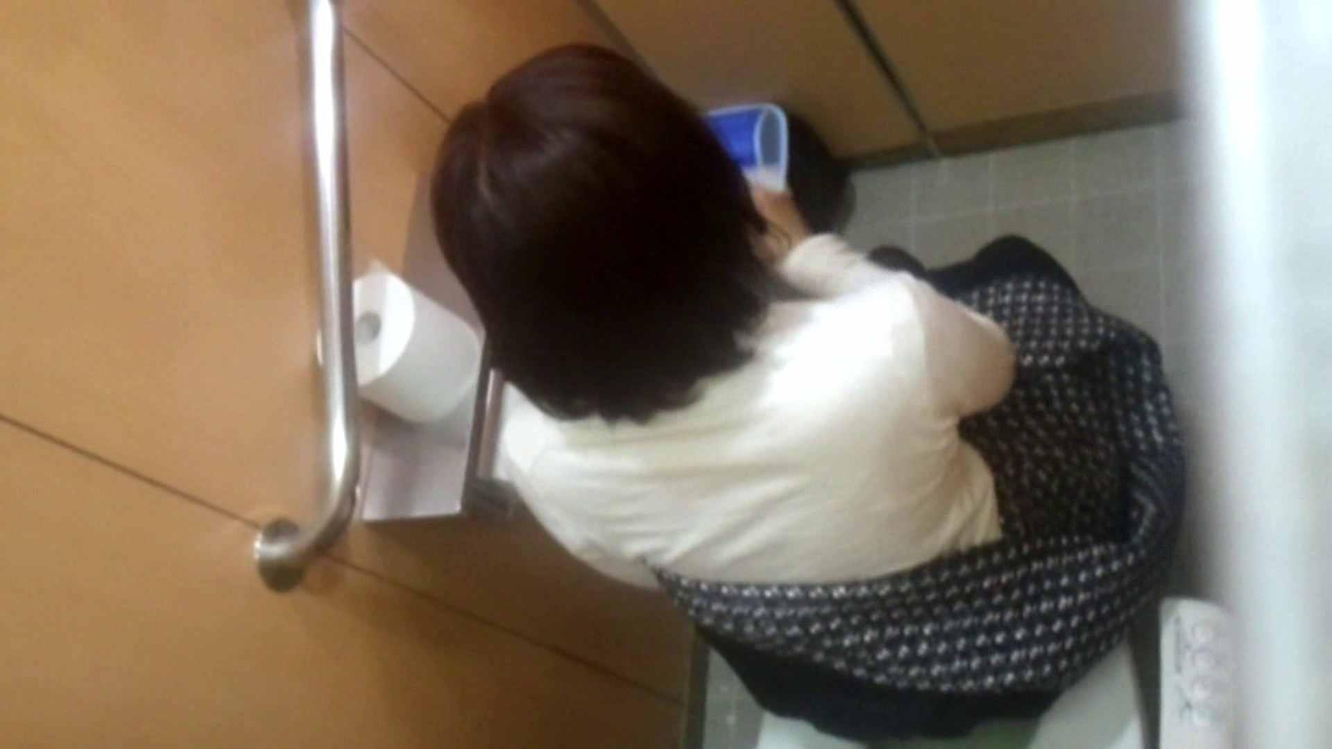 化粧室絵巻 商い場編 VOL.15 高画質  97PIX 4