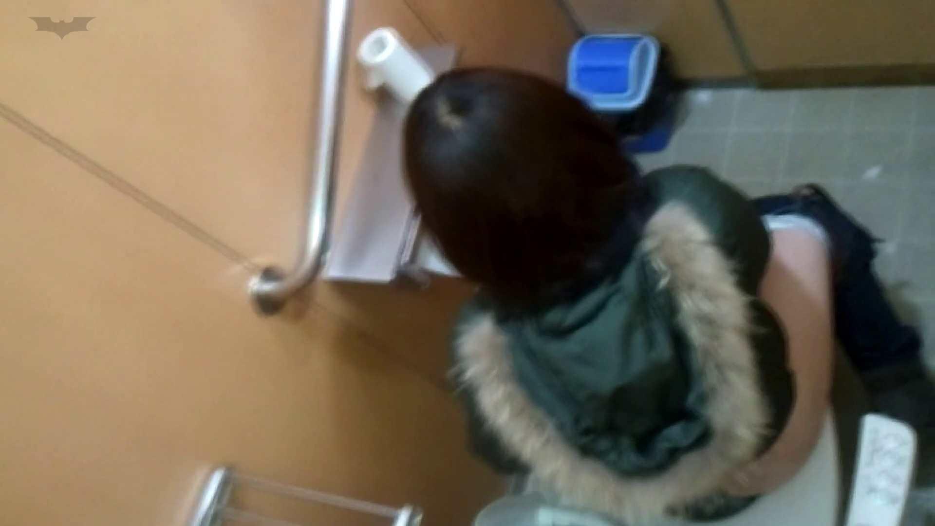 化粧室絵巻 商い場編 VOL.21 ギャル  63PIX 7