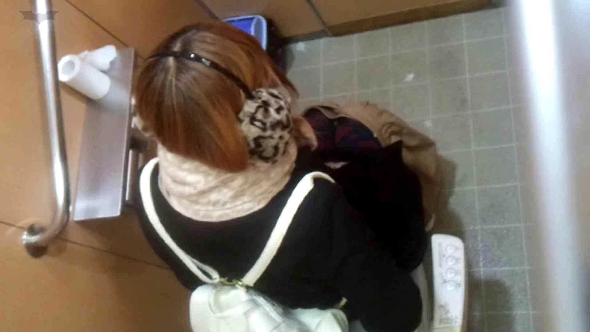 化粧室絵巻 商い場編 VOL.21 ギャル  63PIX 30