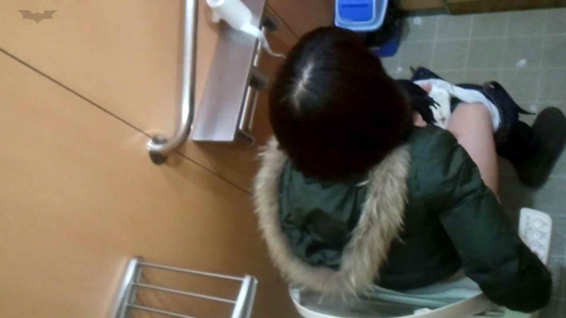 化粧室絵巻 商い場編 VOL.21 ギャル  63PIX 39