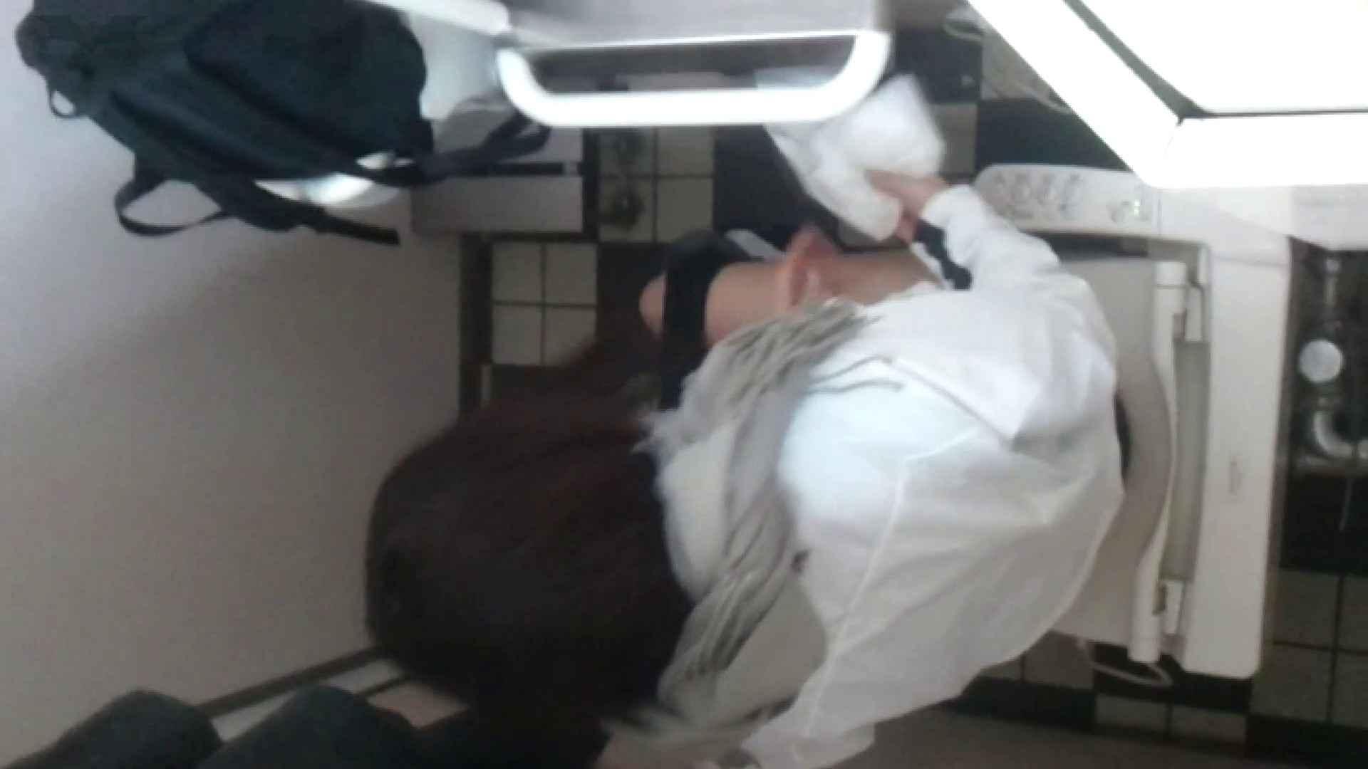 化粧室絵巻 駅舎編 VOL.11 大量、大量!! お姉さん  86PIX 20