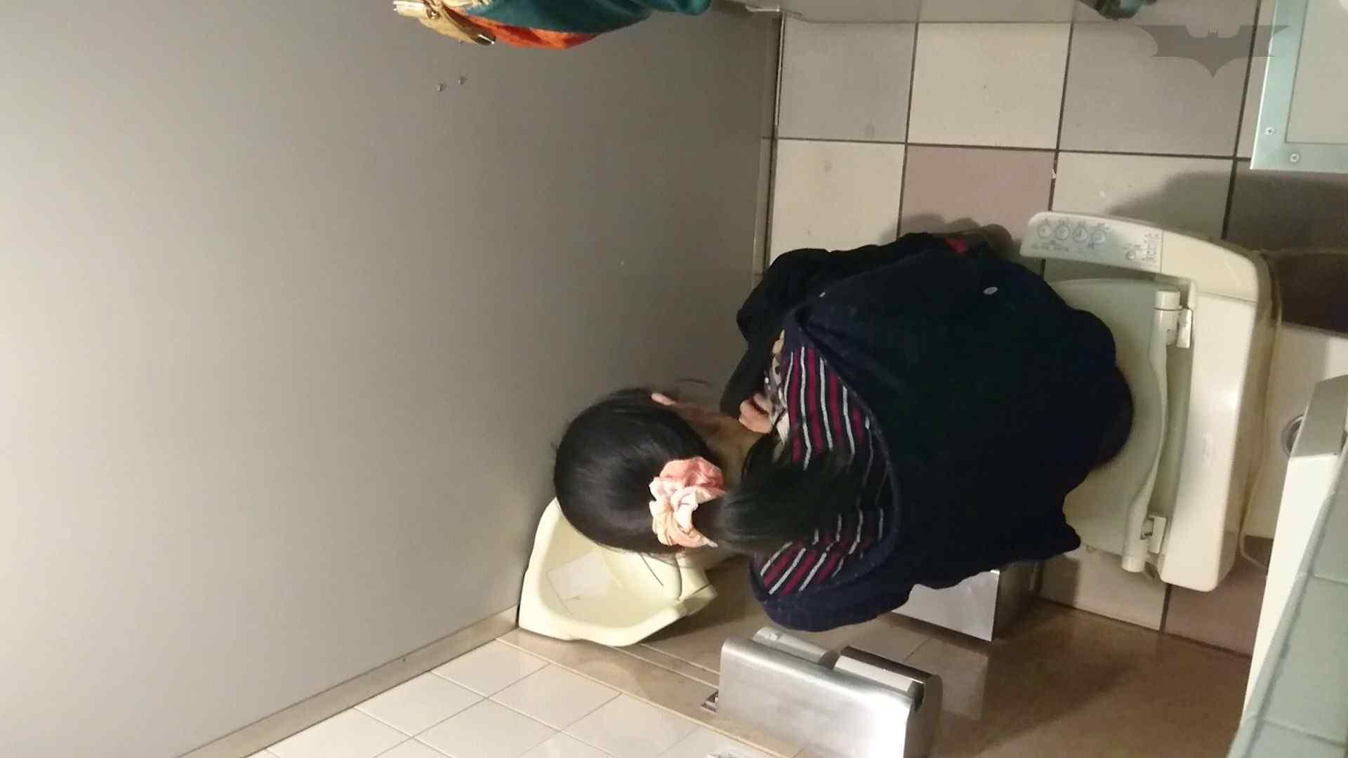 化粧室絵巻 ショッピングモール編 VOL.16 丸見え  59PIX 8