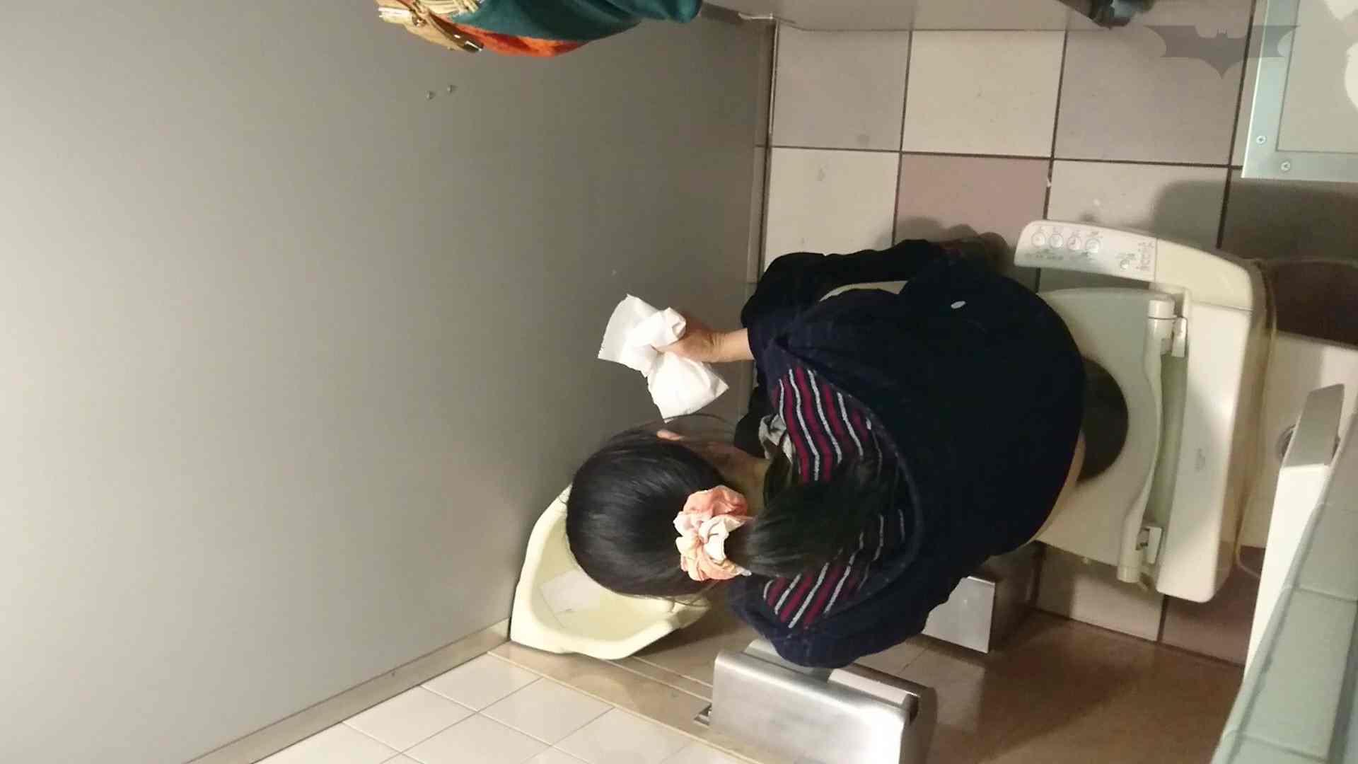 化粧室絵巻 ショッピングモール編 VOL.16 丸見え  59PIX 11