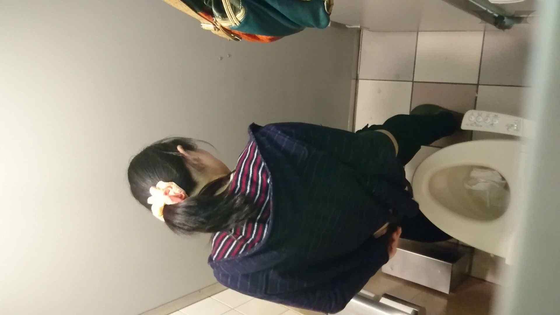 化粧室絵巻 ショッピングモール編 VOL.16 丸見え  59PIX 13