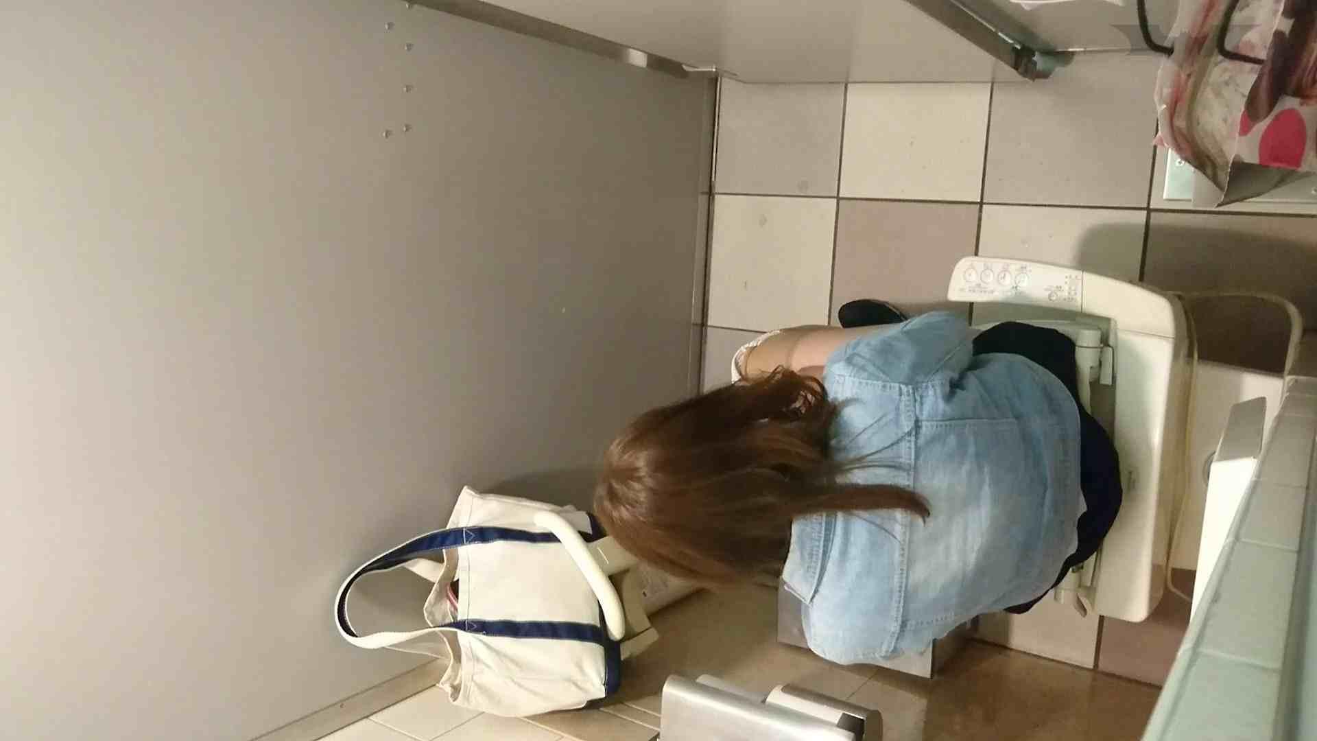 化粧室絵巻 ショッピングモール編 VOL.16 丸見え  59PIX 43