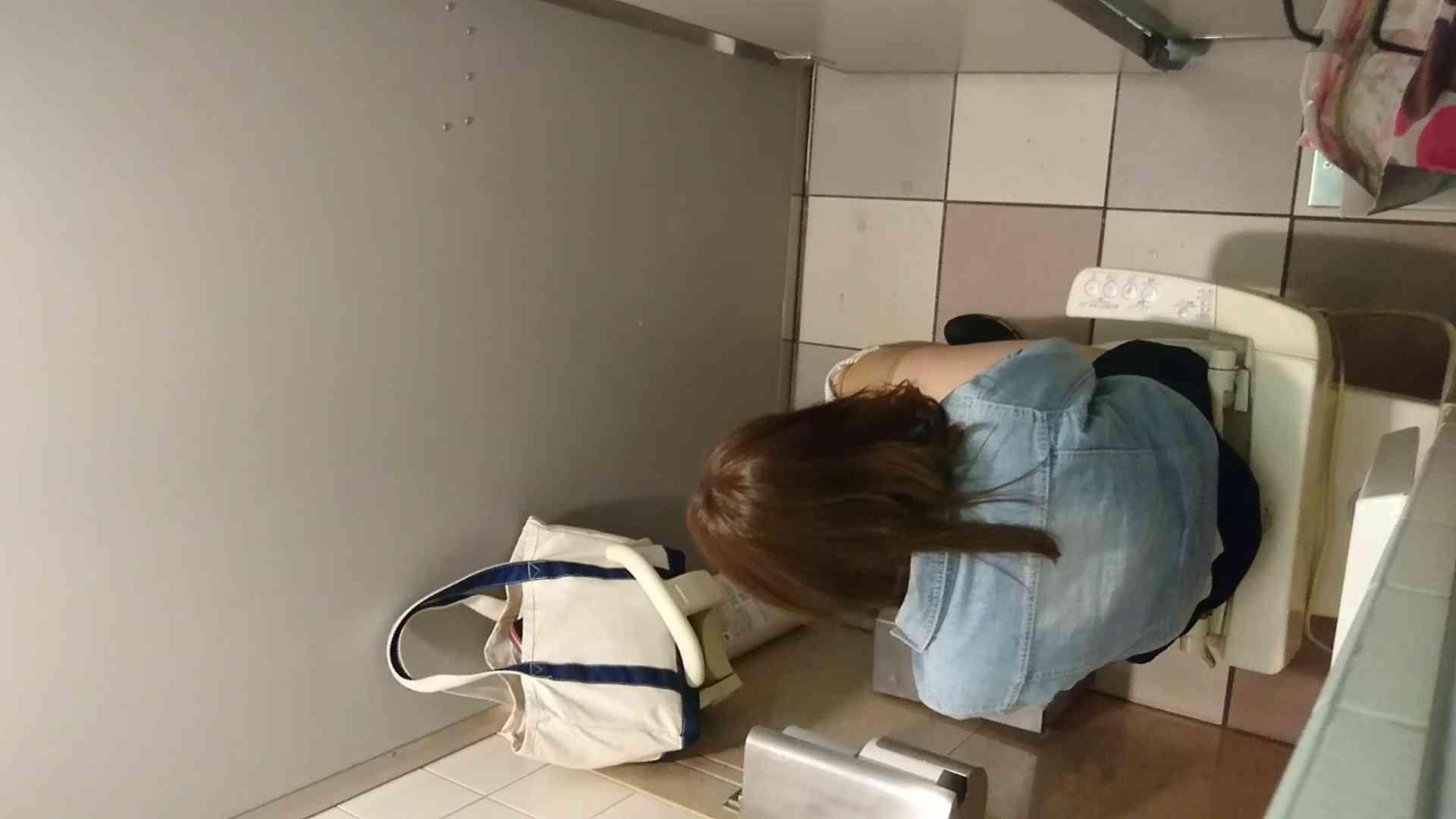 化粧室絵巻 ショッピングモール編 VOL.17 盛合せ  100PIX 19