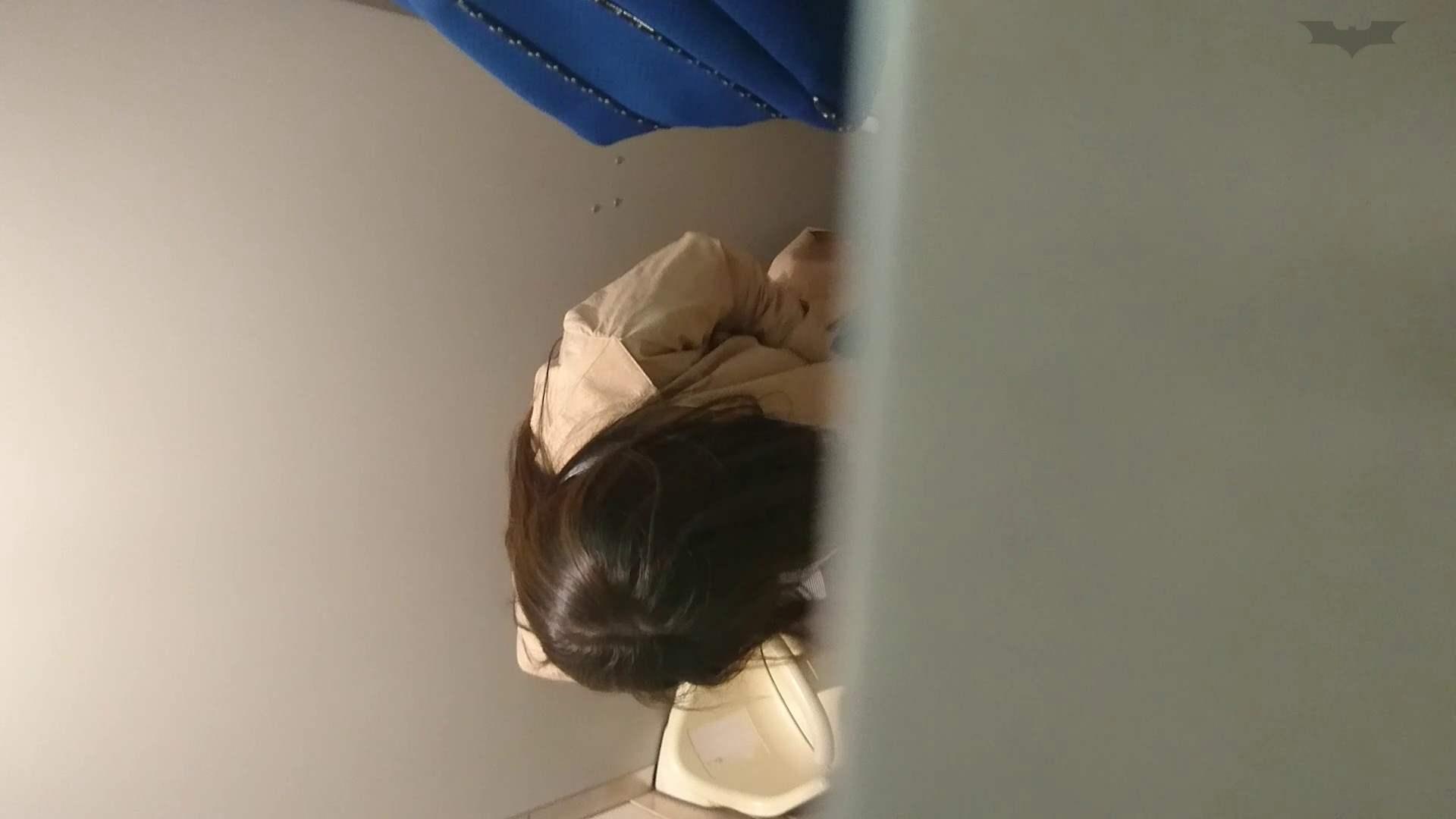 化粧室絵巻 ショッピングモール編 VOL.18 美肌  79PIX 11