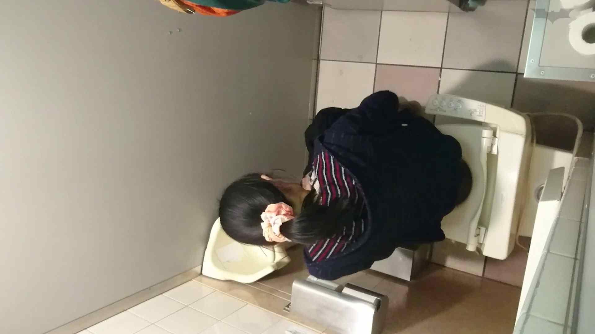 化粧室絵巻 ショッピングモール編 VOL.18 美肌  79PIX 34